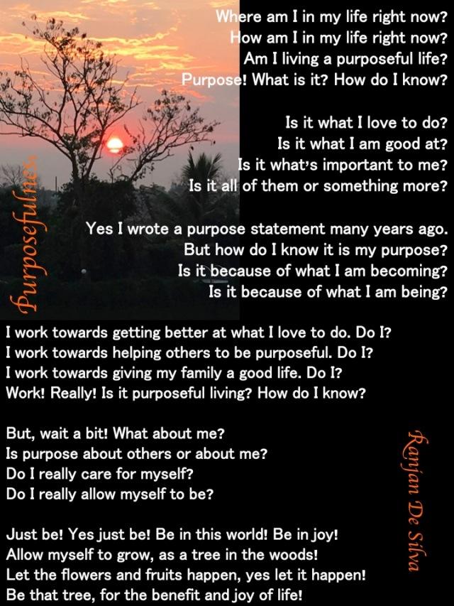 Purposefulness the poem June 16